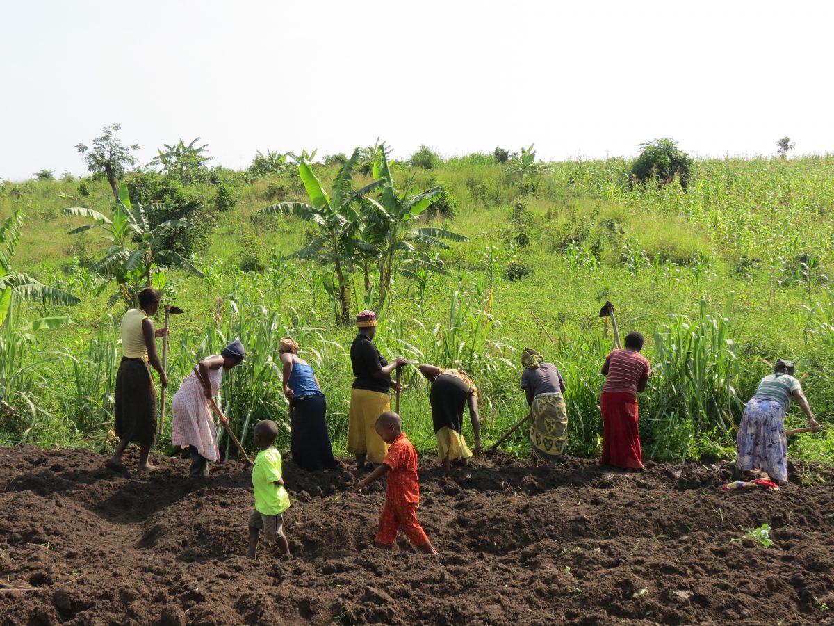 Ouganda: la survie économique des femmes en terre d'exil