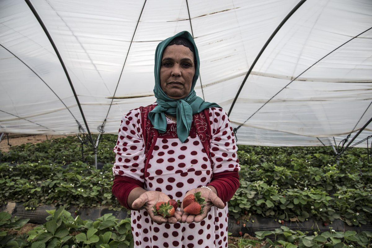 À Huelva, les fraises ont le goût de l'exploitation des femmes